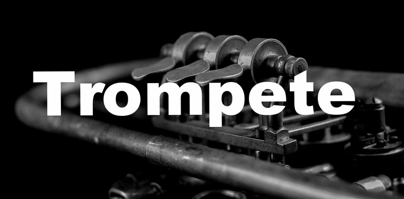 Trompetenunterricht Instrumentalunterricht Okatyev