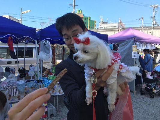 天然・国産・無添加・無着色・天日干し 犬猫おやつ bau-bau シーズー