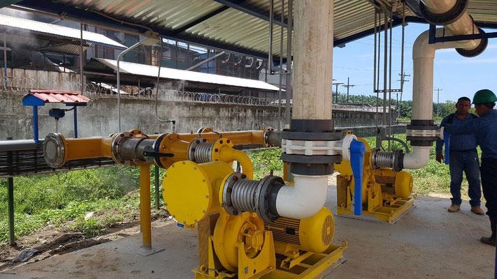 Atex blowers for biogas - GLP - NG