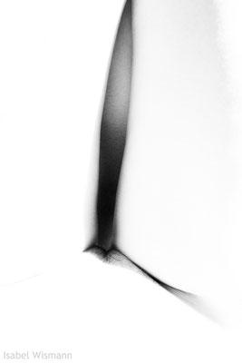 lumineux (Fotografie)