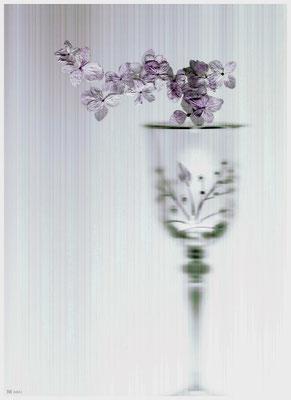 """""""durch die Blume"""" #2"""