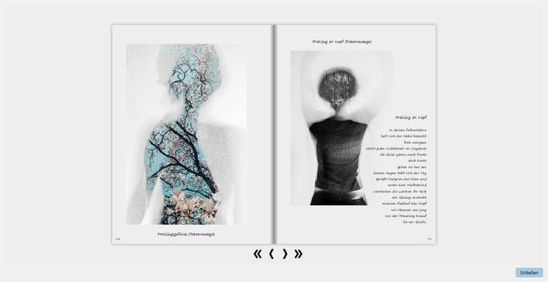 2. Buch 5