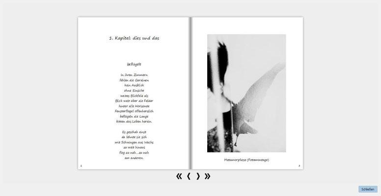 1. Buch 2