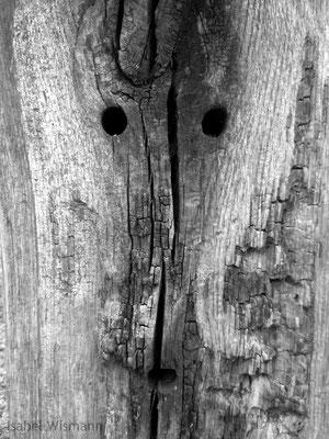 face (Fotografie)