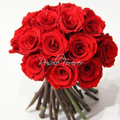15 roses CHF 185.00