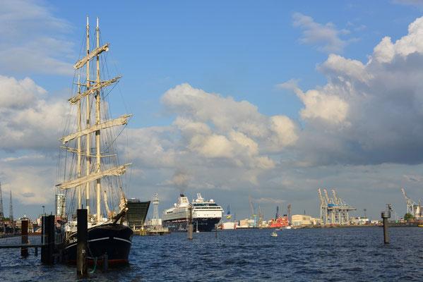 Petro Donker (Dreimast-Barkentine) u. Mein Schiff