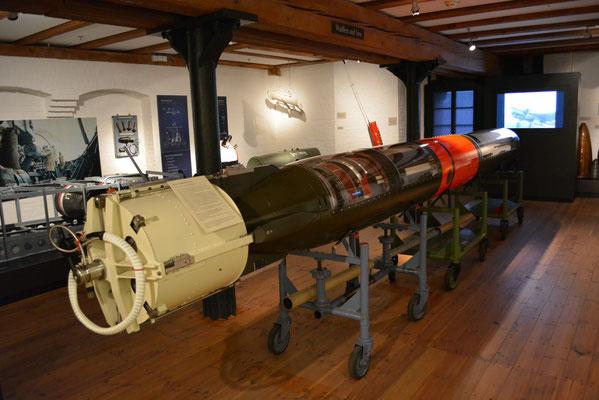 IMMH (Seeziel-Torpedo DM 2 A1 Seal, um 1970 Bundesmarine,Deutsche Marine) am 24.02.2013