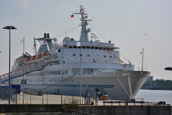 MS DELPHIN am HCC HafenCity am 04.05.2013