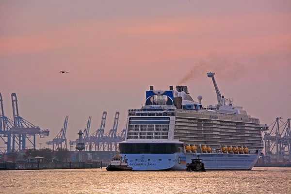 ANTHEM OF THE SEAS vor dem Eindocken in DOCK ELBE 17 am 23.03.2015