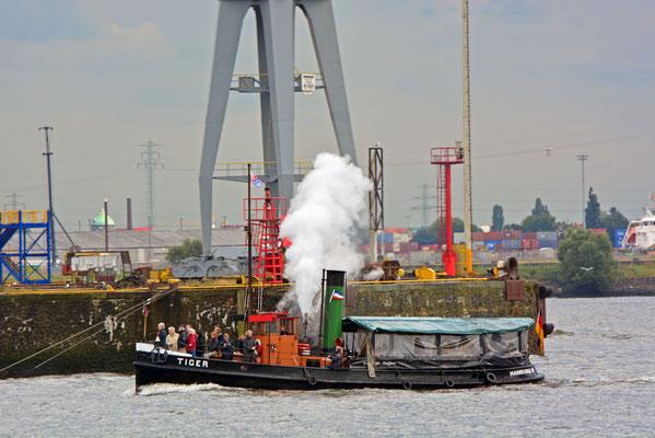 Dampfschlepper TIGER zur Parade Hamburger Traditionsschiffe am 23.08.2014