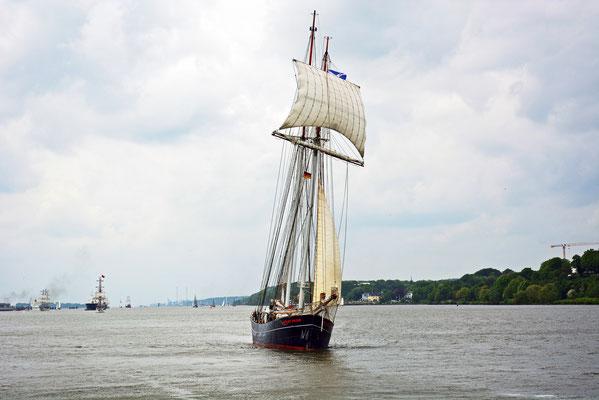 WYDE SWAN auf der Elbe vor Övelgönne