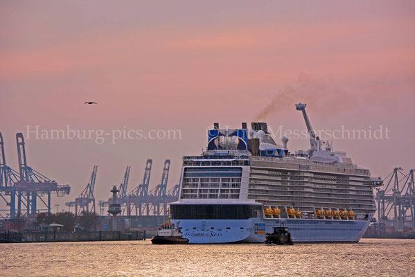 Kreuzfahrtschiffe - 1