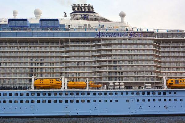 ANTHEM OF THE SEAS (vor der Taufe) zum Eindocken in DOCK ELBE 17 am 23.03.2015