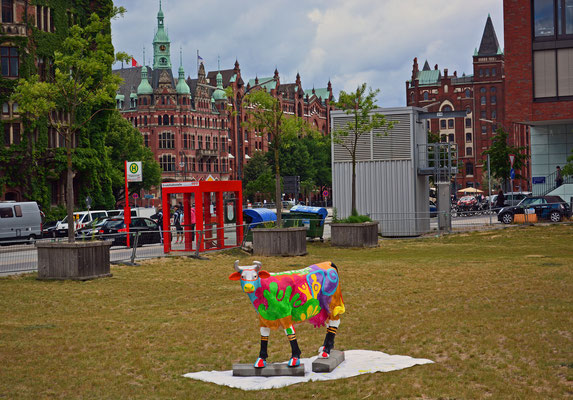 Kuh in der Hafencity