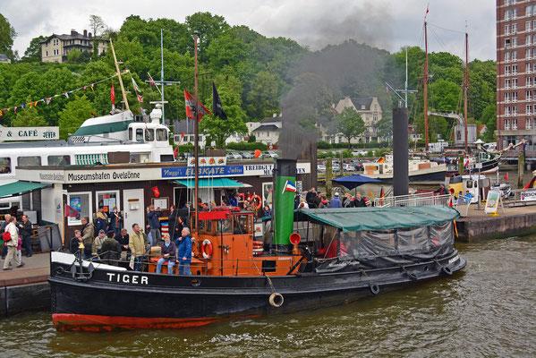 Dampfschlepper TIGER im Museumshafen Övelgönne zum 825.Hamburger Hafengeburtstag 2014
