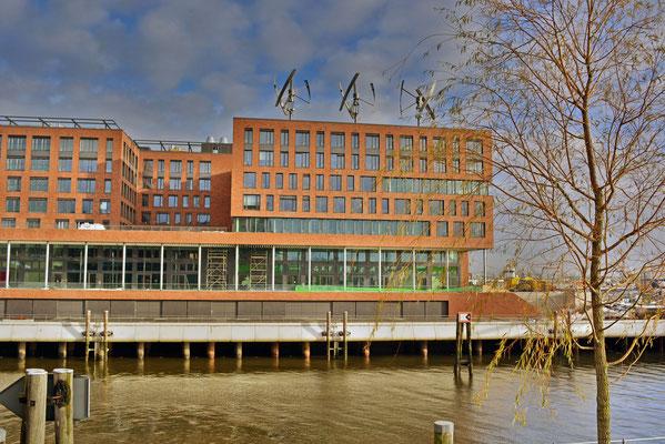 Windturbinen auf dem Dach vom GREENPEACE-Gebäude am Magdeburger Hafen