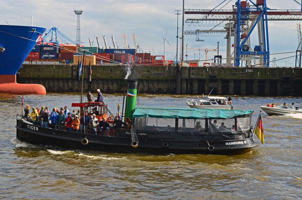 TIGER (Dampfschlepper) zum 823.Hamburger Hafengeburtstag 2012