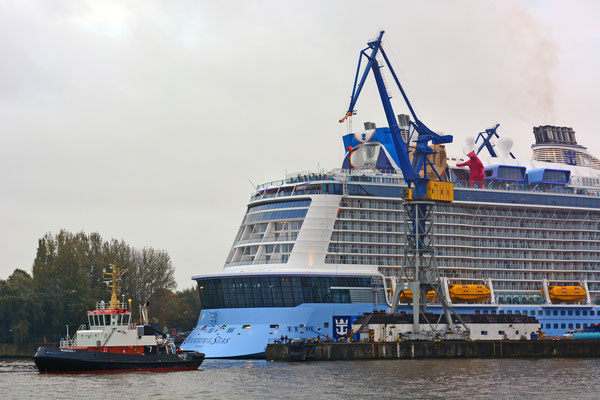 QUANTUM OF THE SEAS beim Ausdocken aus Dock ELBE 17 am 25.10.2014
