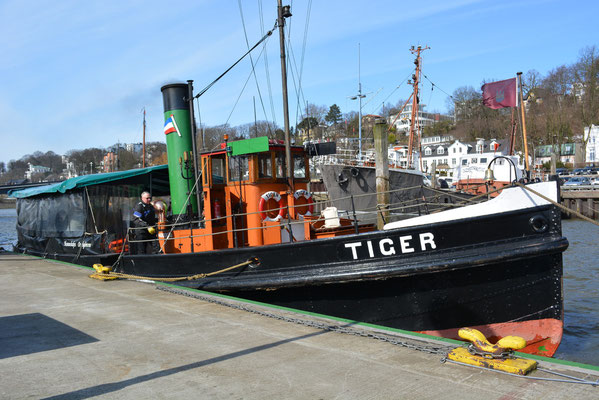 TIGER im Museumshafen Övelgönne am 23.03.2013