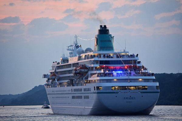 MS AMADEA läuft im Hamburger Hafen aus am 27.07.2013