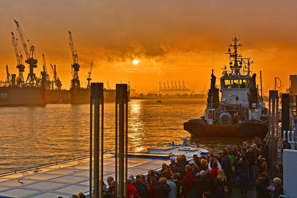 Beim Auslaufen der QUANTUM OF THE SEAS aus dem DOCK ELBE 17 zum Sonnenuntergang