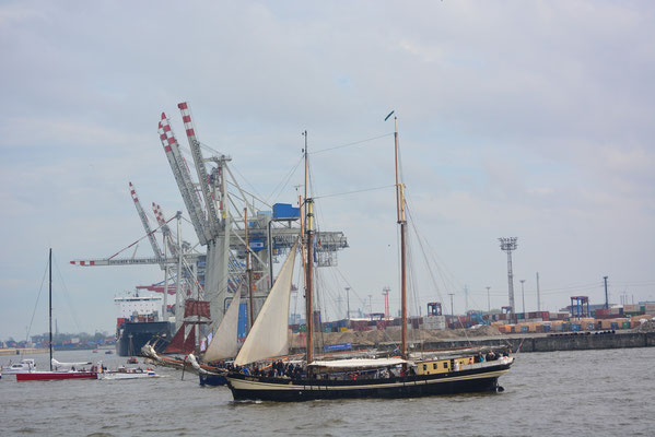 zuiderzee zur Einlaufparade beim 824.Hamburger Hafengeburtstag am 09.05.2013