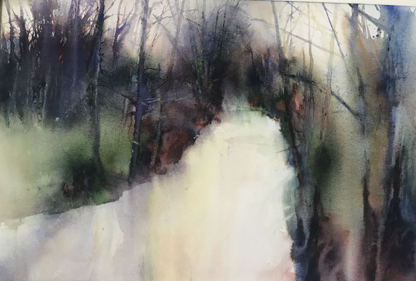 Suggestions of Winter Colour - watercolour - 64 x 44 cms