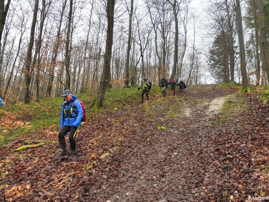 Descente 👇😰 de la fin de la route forestière d'Envermeu vers la route forestière du Sauchay 👍😊.