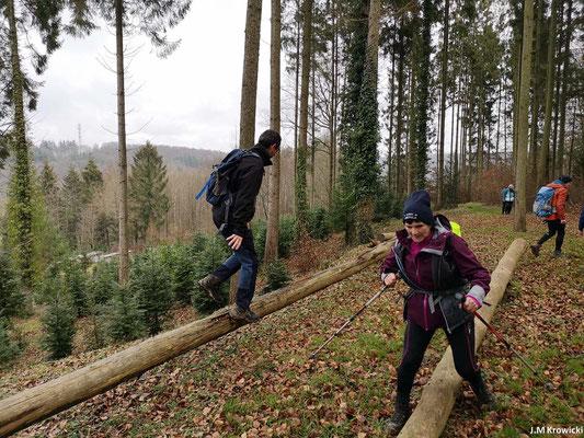 Après l'effort de la montée 👆😰 un peu de décontraction avec un petit jeux d'équilibre 👍😊 à La Caplette. – Fontaine-Le-Bourg.