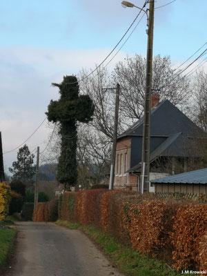 La nature est surprenante 🤔😉😁 ici un envahissement de lierre formant une croix  ✝ à Le Creux. – Fontaine-Le-Bourg.