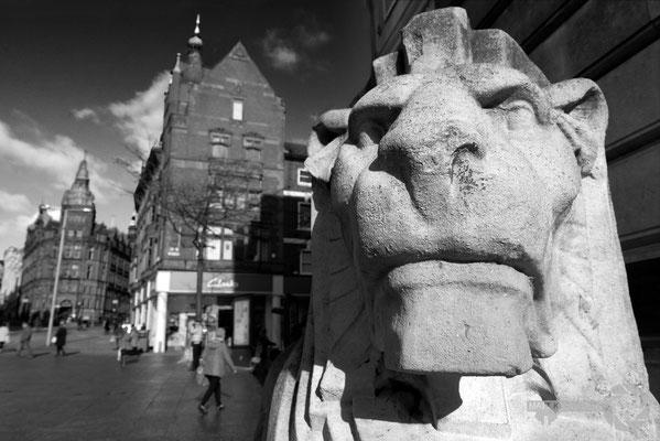Left Lion