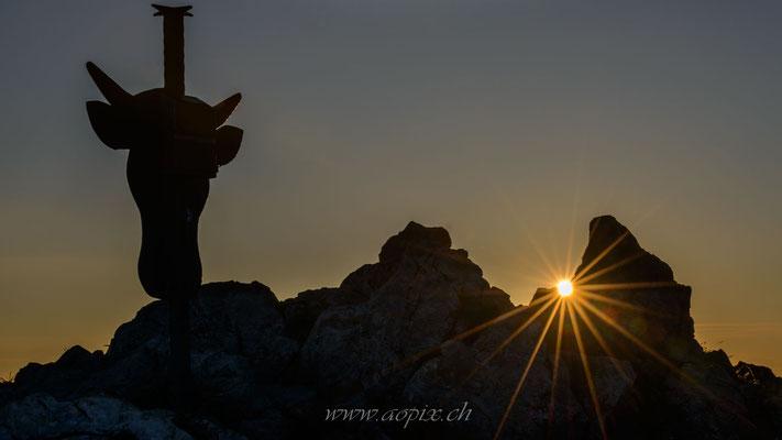 Sonnenstern auf dem Gipfel des Ochsen