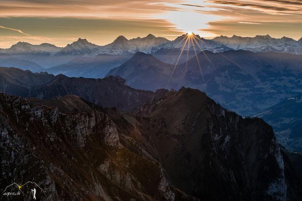 Jungfraustern