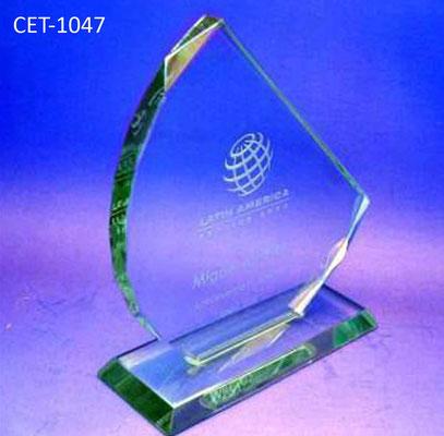 Reconocimiento CET 1047