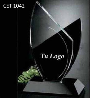 Reconocimiento CET 1042