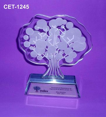 Reconocimiento CET 1245