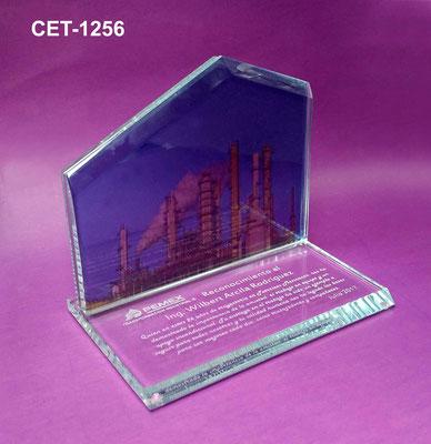 Reconocimiento CET 1256