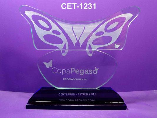 Reconocimiento CET 1231