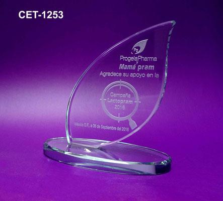 Reconocimiento CET 1253