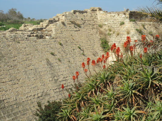 Ramparts of Caesarea