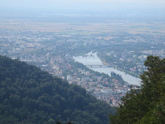 Heidelberg from Koenigstuhl