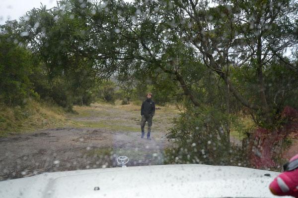 es regnete dann auch eher öfters