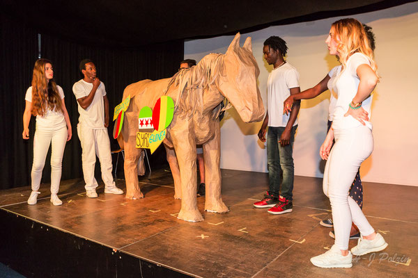 Troja ist überall Käthe-Kollwitz-Schule Aachen 2017