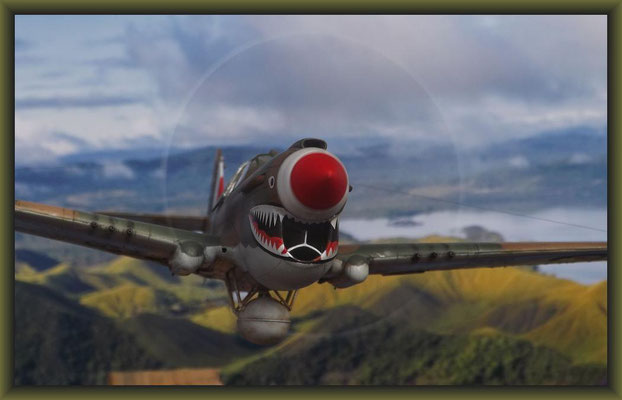 """Baywatch"" P-40E Kittyhawk / 1:48 Completion"