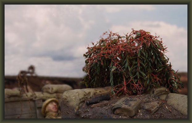 Secret Garden, WWI Vignette 54mm, Completion