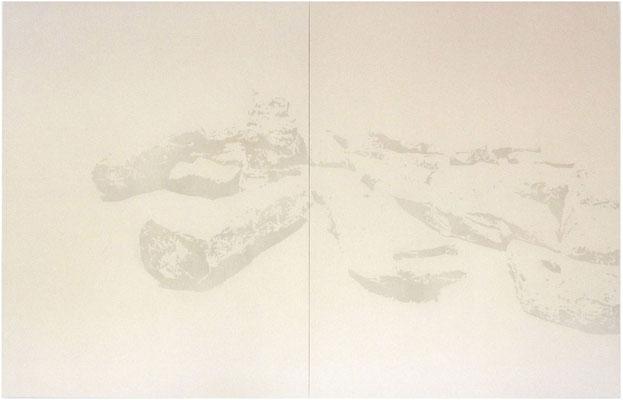 <b>Landschaft 10</b><br />2010<br />Sepiatusche und Acryllack auf Leinen<br />225 cm x 340 cm