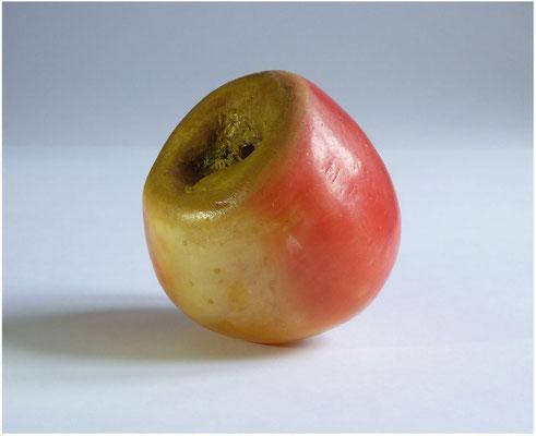 <b>Wilhelm Tell</b><br />2014<br />Wachs, Wachsfarbe, Apfelstiel<br />7 cm x 7 cm x 8 cm