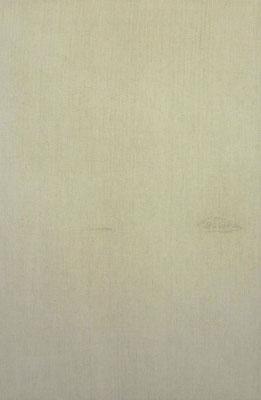 <b>N.N. 2190</b><br />2015<br />Sepiatusche auf Leinen<br />115 cm x 75 cm
