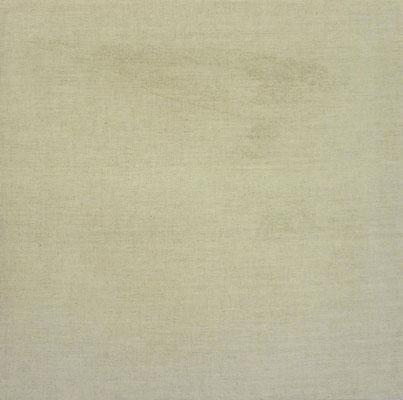 <b>N.N. 406</b><br />2016<br />Sepiatusche auf Leinen<br />58 cm x 58 cm