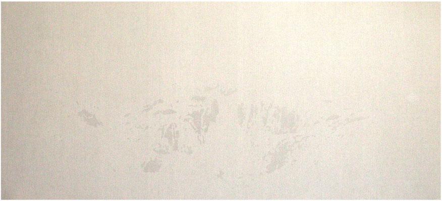 <b>Landschaft 9</b><br />2009<br />Sepiatusche und Acryllack auf Leinen<br />100 cm x 230 cm